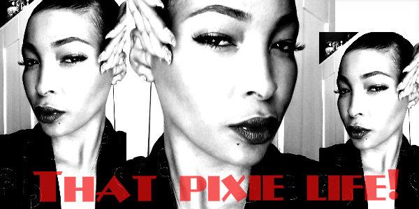Pixie Life